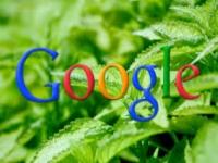 Google updates search engine algorithm