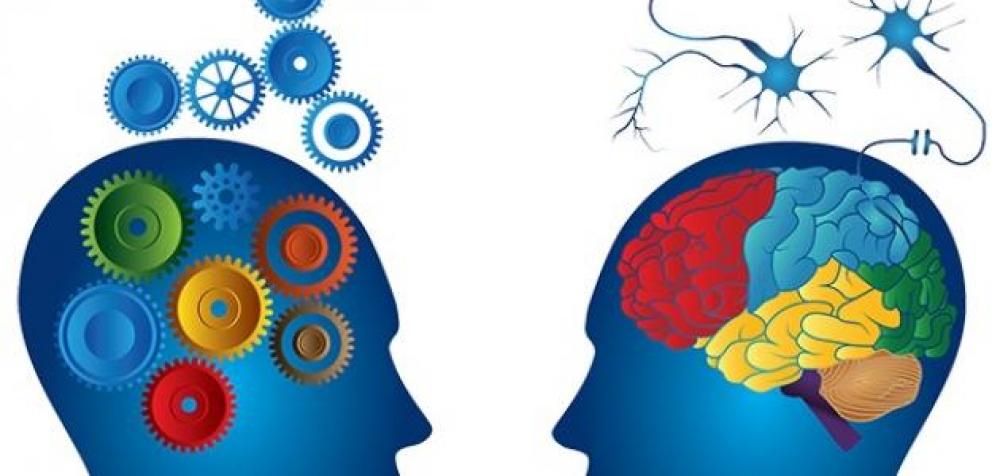 كيف يجب أن نتعامل مع علوم البرمجة اللغوية العصبية؟